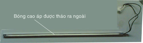 bongcapap2